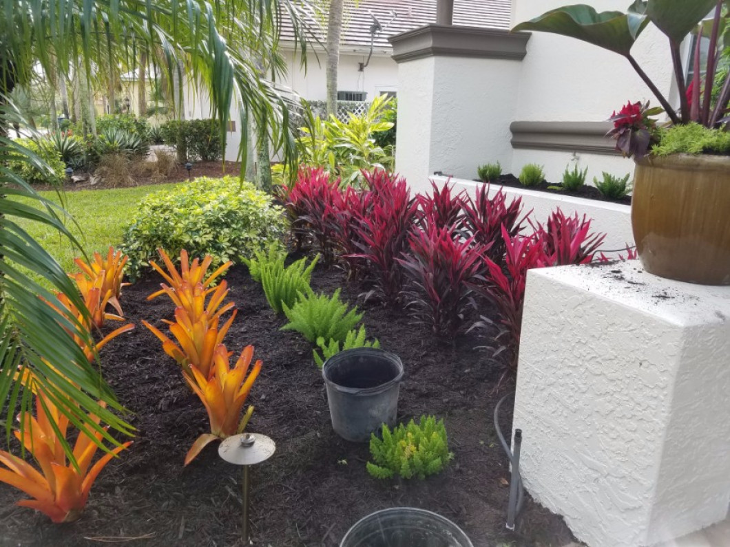 Leave Your Yard in the Experienced Hands of Florida Environmental